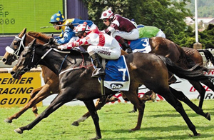 gautengs-new-gambling-taxes-will-affect-racing