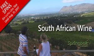 springbok-casino-raises-a-glass-to-south-african-wine-industry