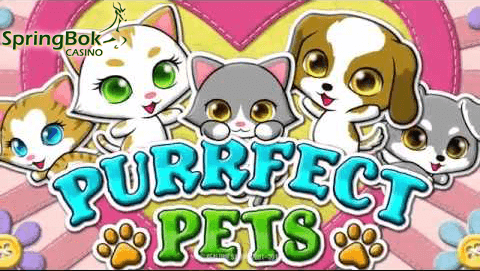 purrfect-pets-slot-to-go-live-at-springbok-casino