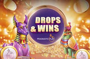 enter-drops-wins-promotion-casino-cruise
